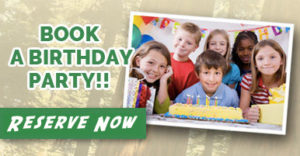 Book A Birthday Party At Adventure Park In Visalia